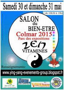 Affiche Zen Colmar 2015