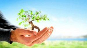 Réconcilier individualisme et altruisme : un cas concret