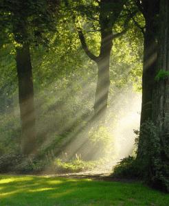 Comment bien méditer au soleil : les plus belles heures