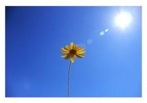 Comment bien méditer en automne, en hiver et au printemps